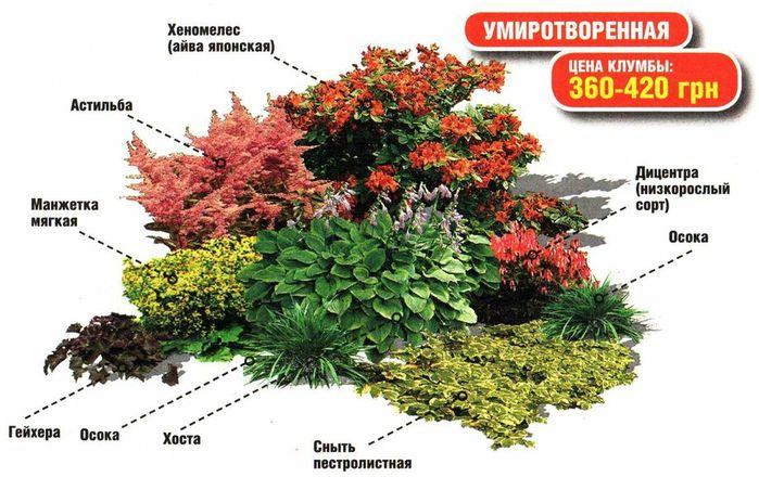 Ландшафтные композиции: основы составления, выбор растений, фото.