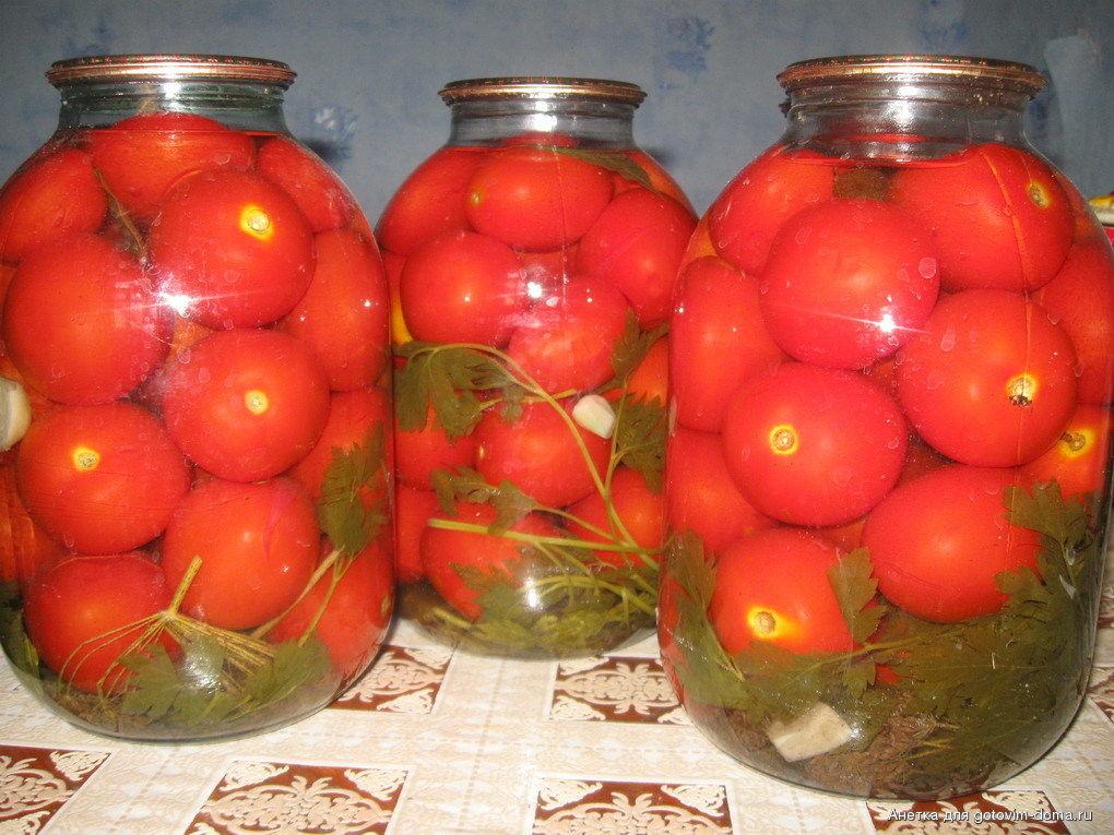 9 лучших рецептовприготовления на зиму консервированных помидоров с хреном и чесноком
