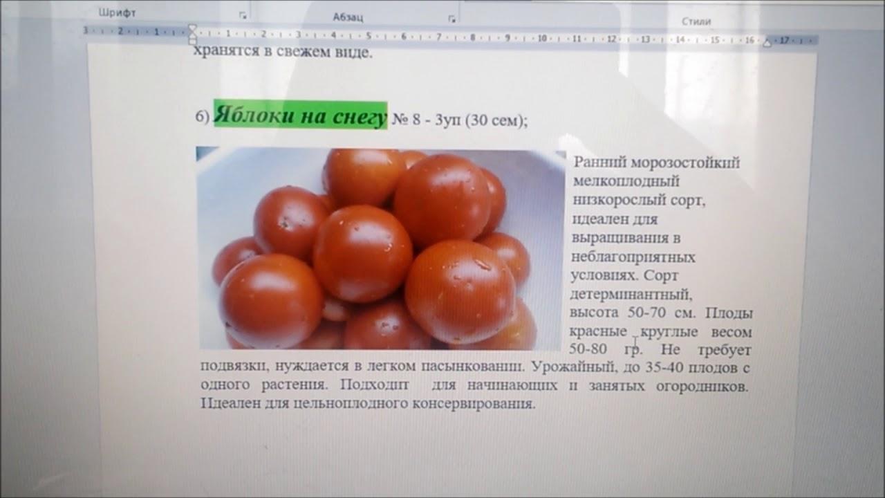 Томат яблоки на снегу: описание сорта, отзывы, фото, урожайность