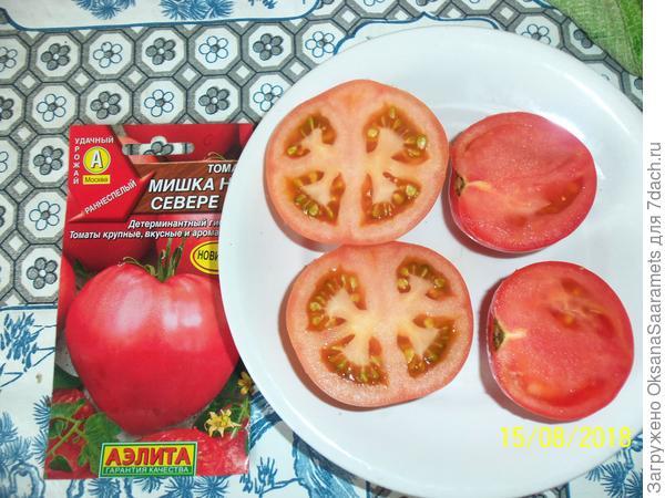 Томат мишка косолапый: описание сорта, отзывы, фото   tomatland.ru