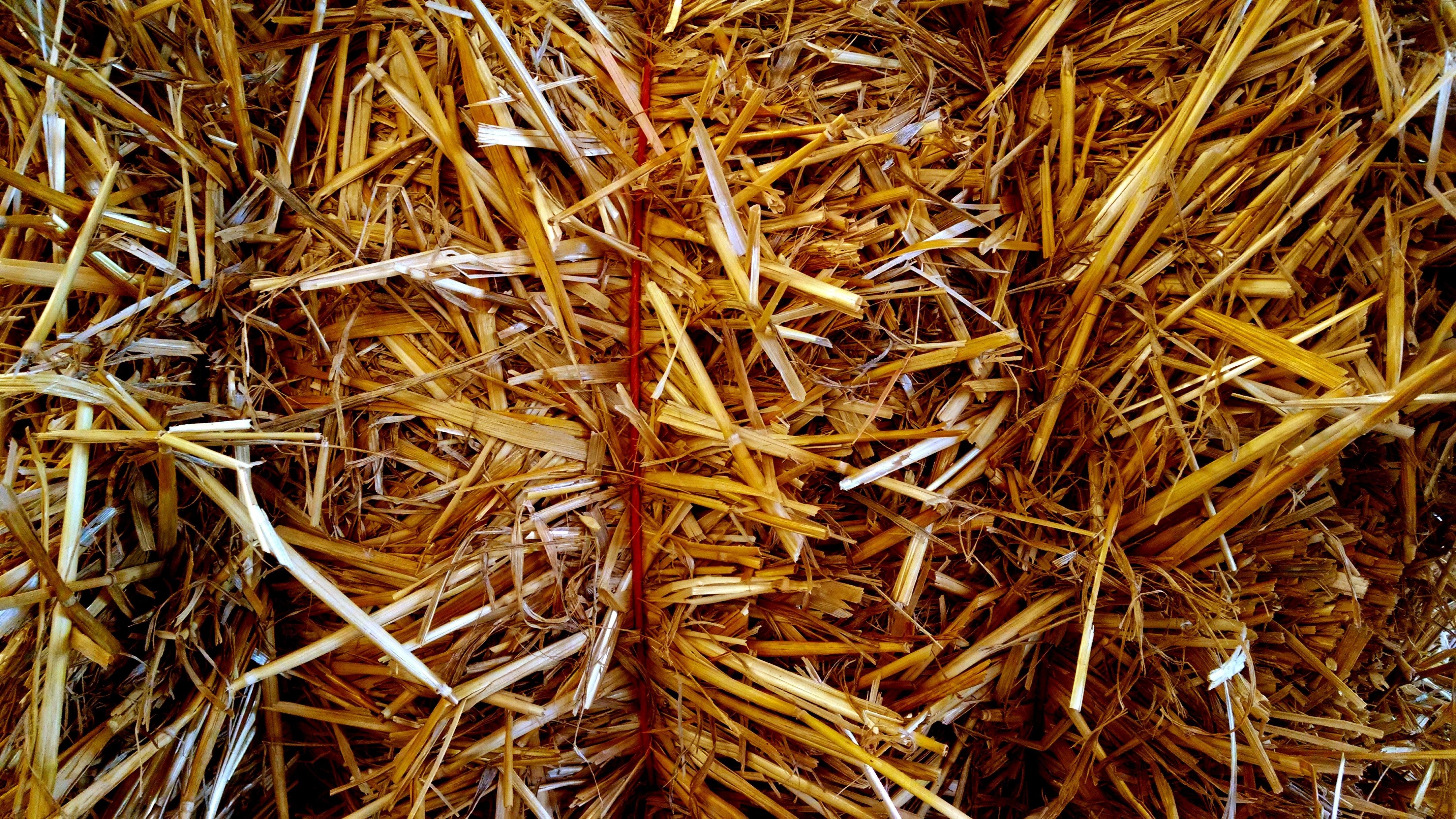 Солома как удобрение для огорода: технология внесения в почву свежего, сгнившего материала и настойки, использование пожнивных остатков различных видов растений