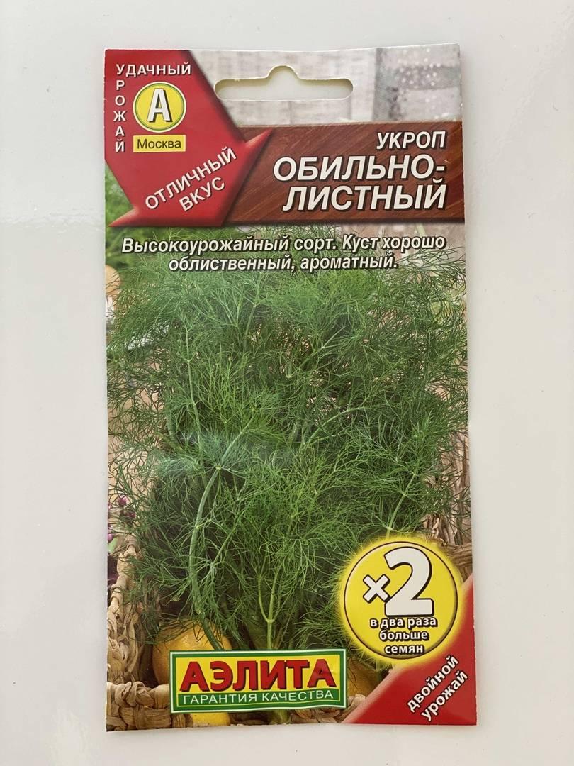 Описание сортов кустового укропа, рекомендации по выращиванию и уходу
