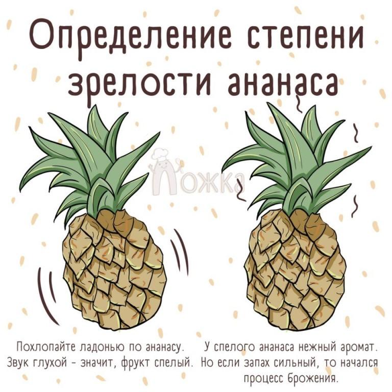 Как выбрать ананас спелый и сладкий в магазине при покупке по внешнему виду и запаху, как дать ему дозреть и сохранить в домашних условиях