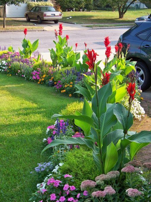 Как посадить тюльпаны, чтобы они радовали глаза?