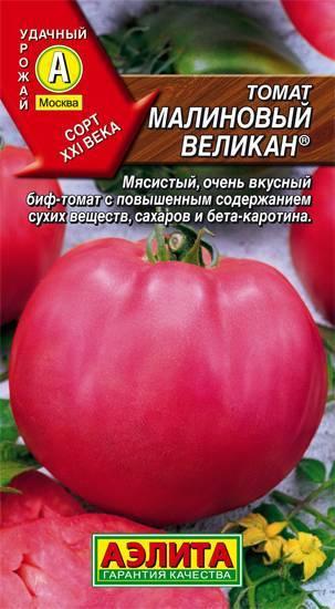 Выращивание томата рапсодия