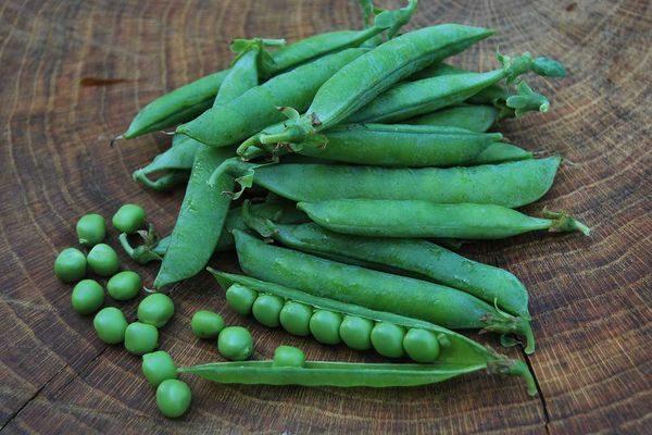 Бобовые растения: что это такое, все ли относятся к овощам или нет, какие бывают, а также список, названия, описание фасоли, гороха, нута, соевых и других видов