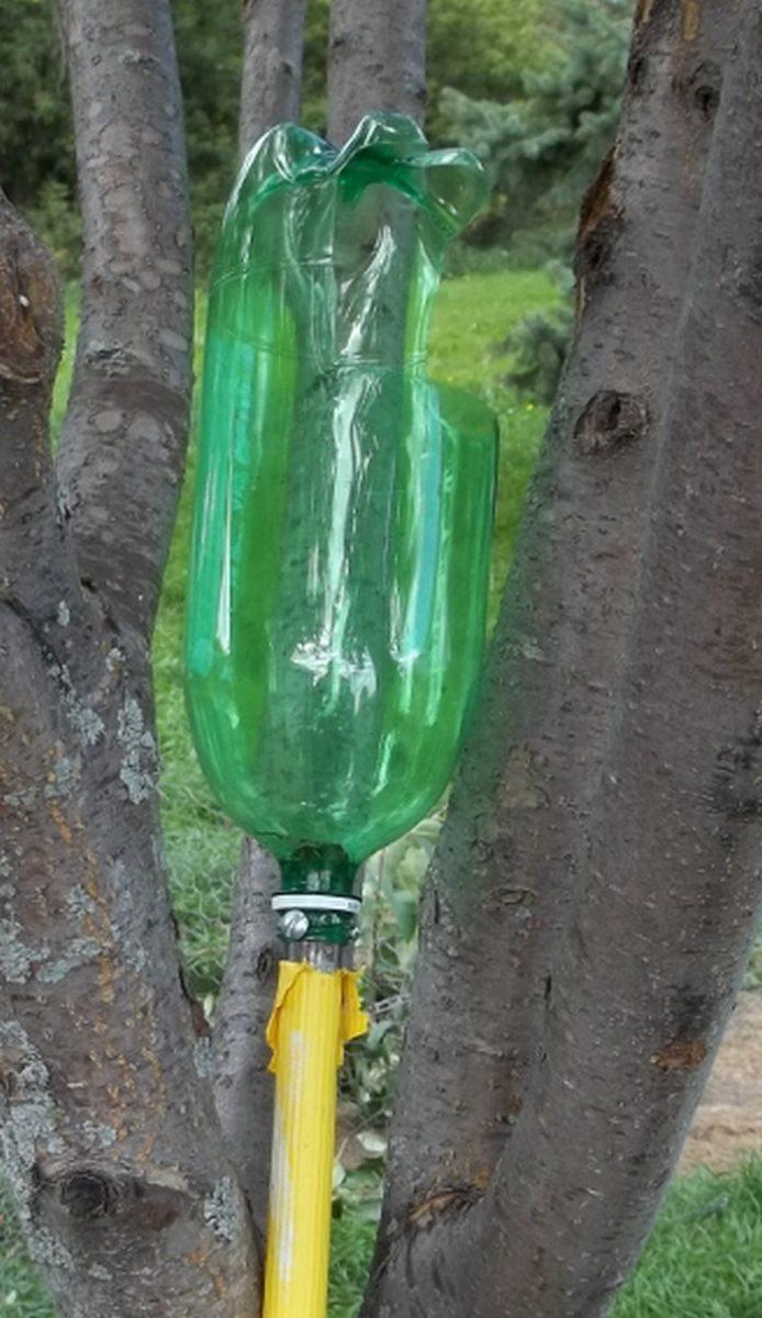 Как и чем снимать плоды с деревьев? популярные инструменты