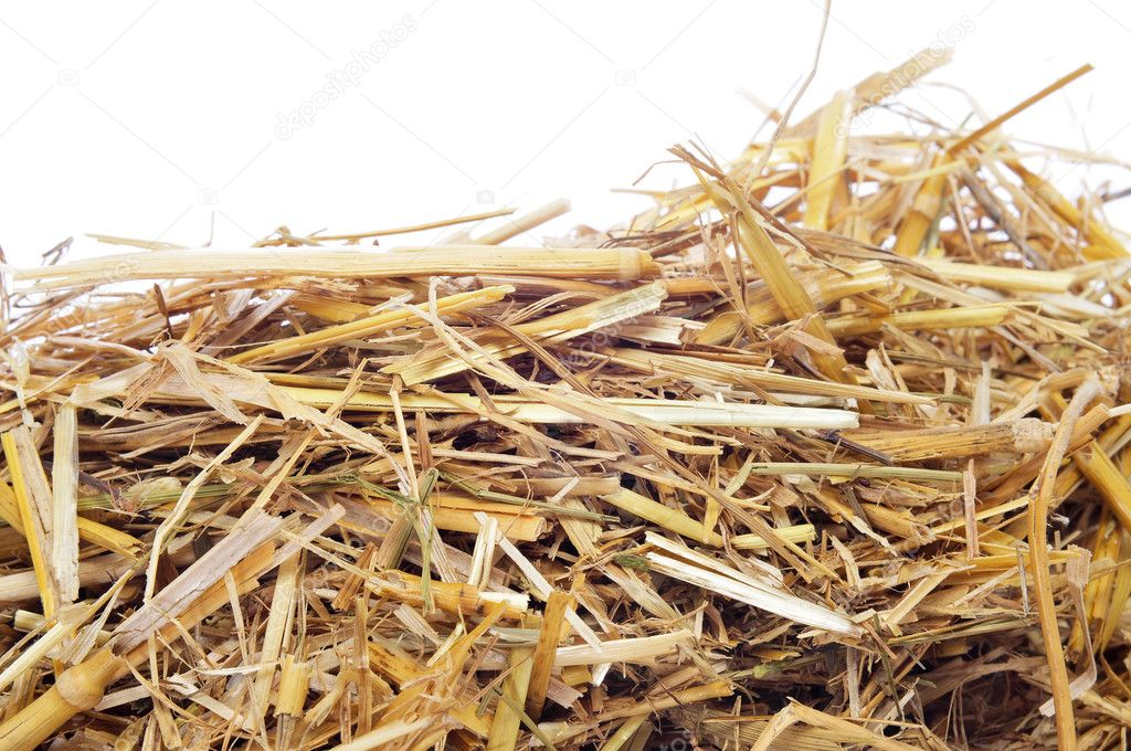 Мульчирование соломой клубники, чеснока, картофеля и других культур