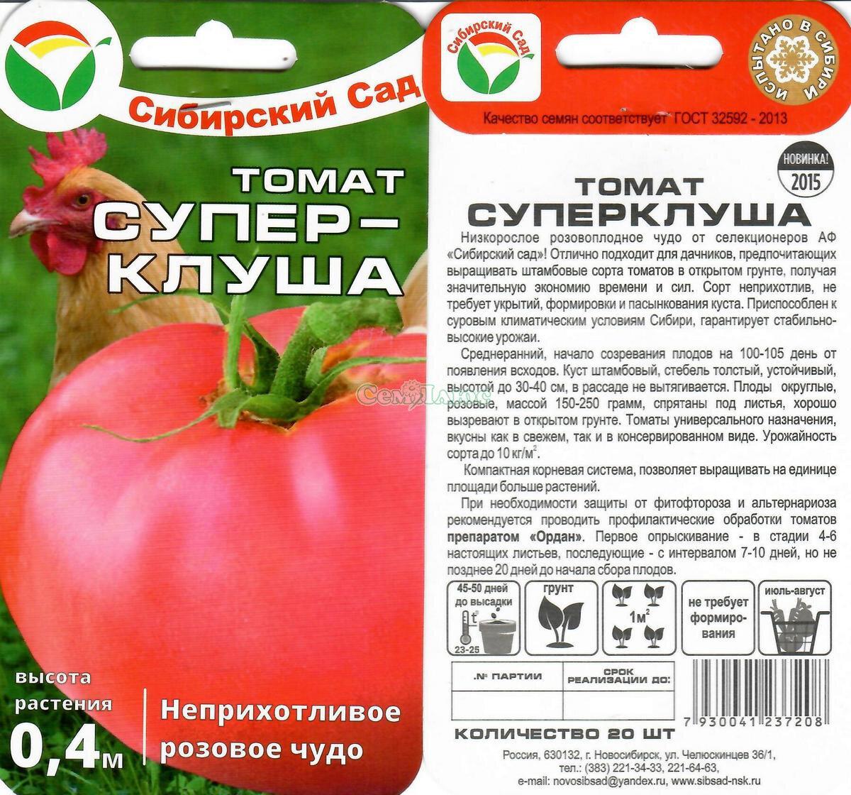 Томат клуша: описание сорта, отзывы, фото   tomatland.ru