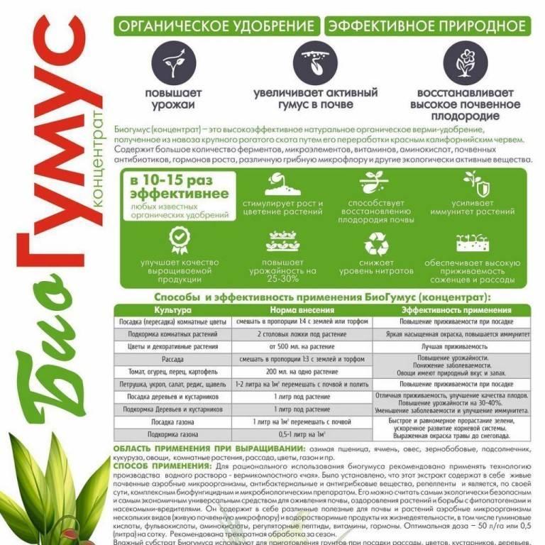 Жидкий биогумус, его особенности и применение для растений