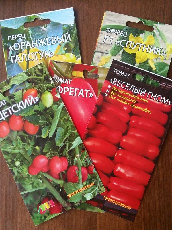 Томаты серии «гном томатный»: характеристика и описание сортов