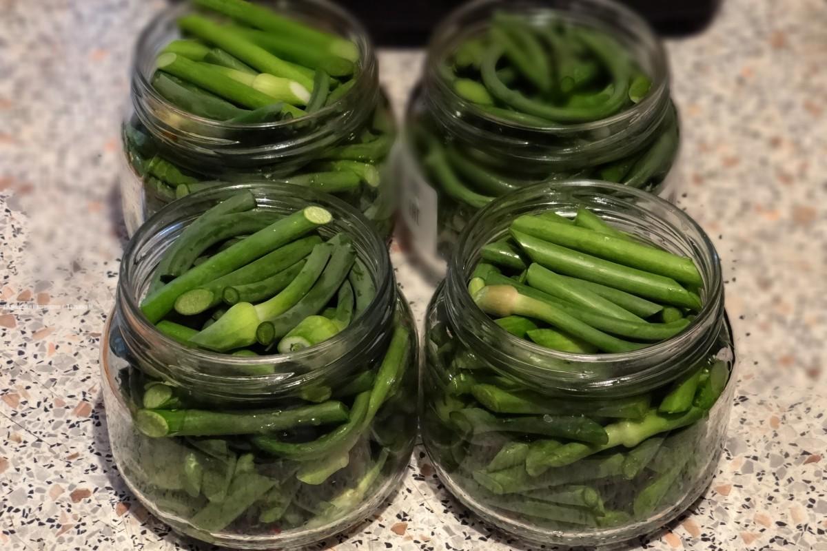 Маринованные стрелки чеснока - рецепты по-корейски, быстрого приготовления и на зиму