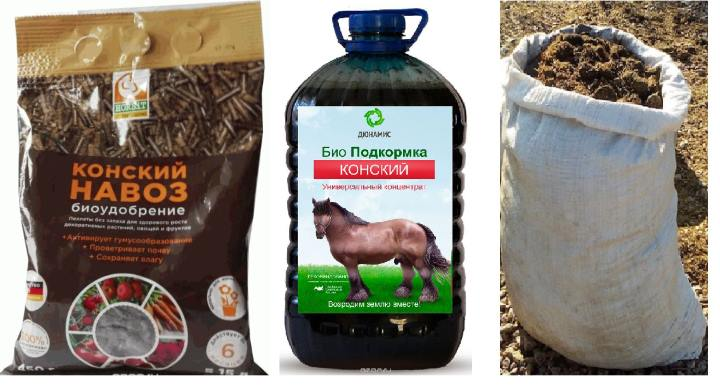 Жидкий экстракт конского навоза как удобрение в огороде: инструкция, как готовить, разводить и применять для подкормки растений, отзывы дачников о концентрате