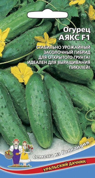 Огурец аякс f1 описание особенностей сорта, выращивание уход и отзывы