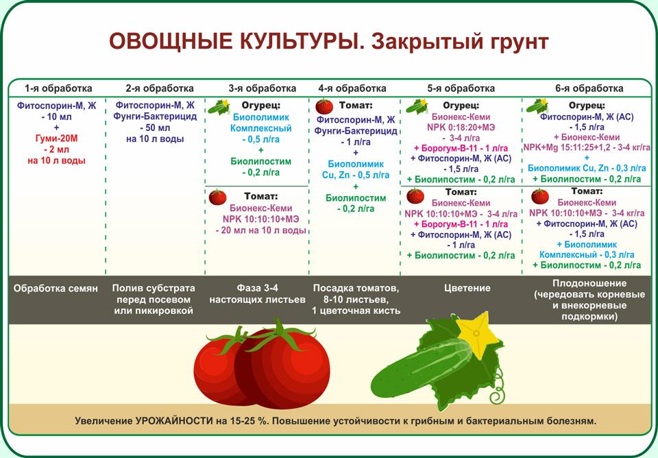 Самые урожайные перцы 2021 года – выбор лучших наименований, их описания и фото, классификация по регионам и скороспелости