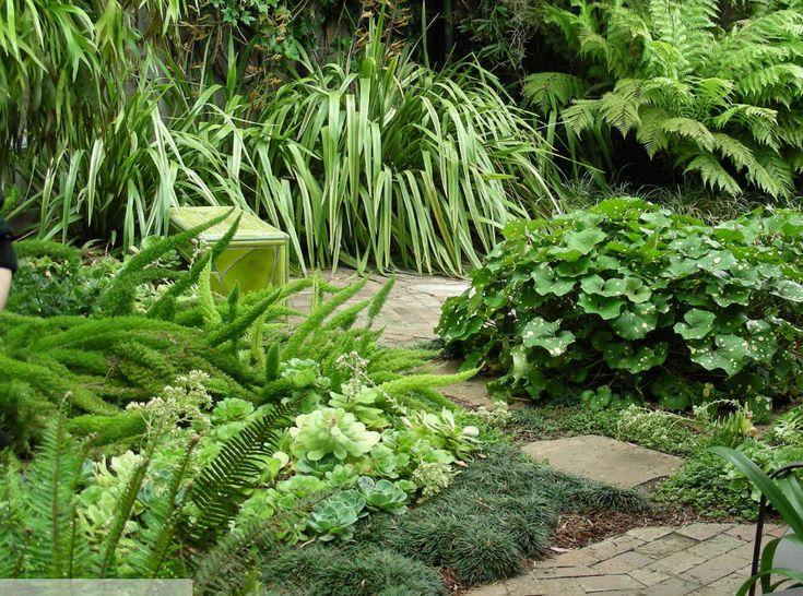 Виды рокариев для каменистого сада и способы обустройства