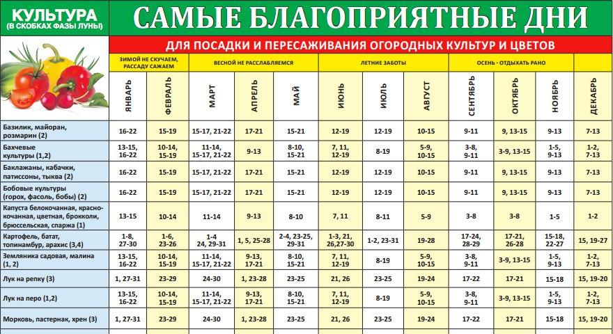 Лунный календарь садовода и огородника 2021 - дача