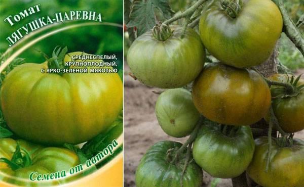 Описание сорта томата царевна лебедь, его характеристика и урожайность