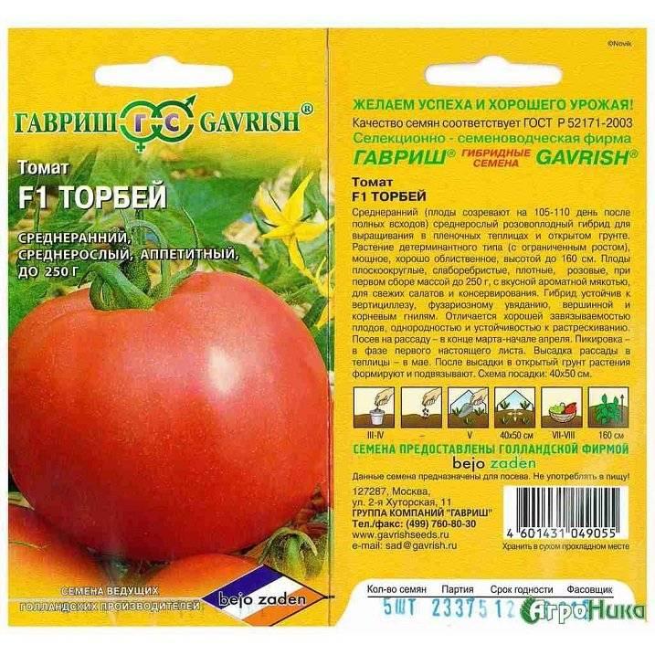 Томат эйджен f1: характеристика сорта и особенности его выращивания