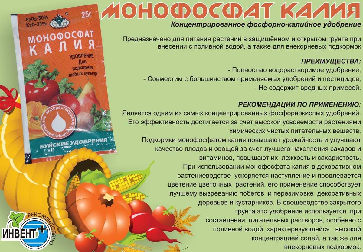 Монофосфат калия: описание удобрения, состав, применение, отзывы - sadovnikam.ru