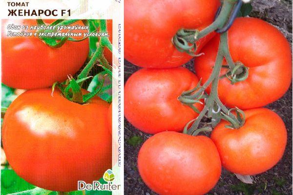 Описание сорта томата Женарос, отзывы и выращивание