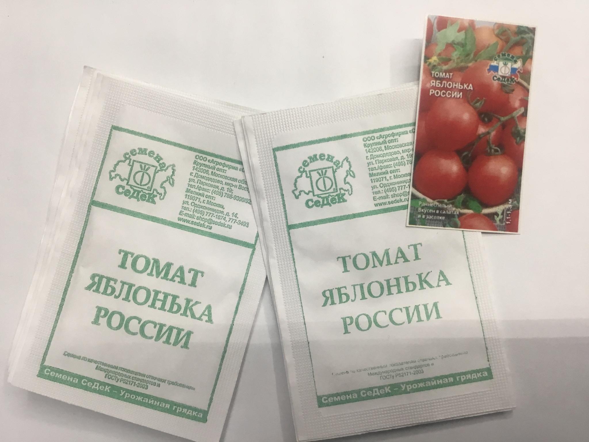Сорт томата яблонька россии