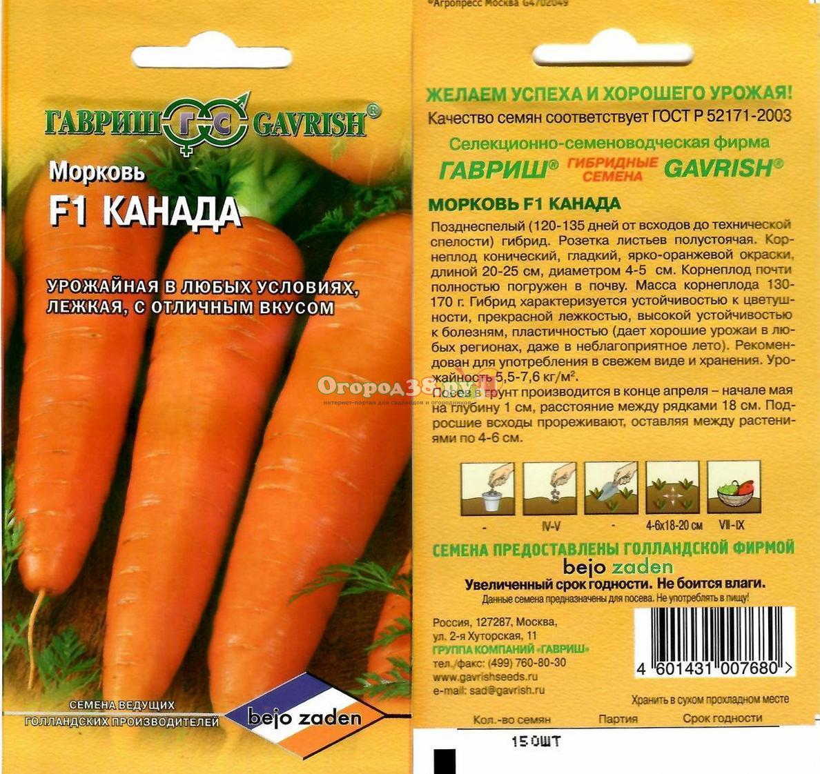 Самый урожайный: сорт моркови канада f1 - агрономwiki