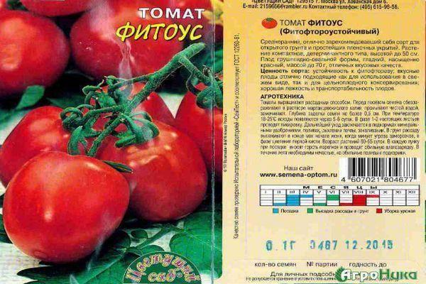 Описание томата Фитоус, выращивание и правила посадки