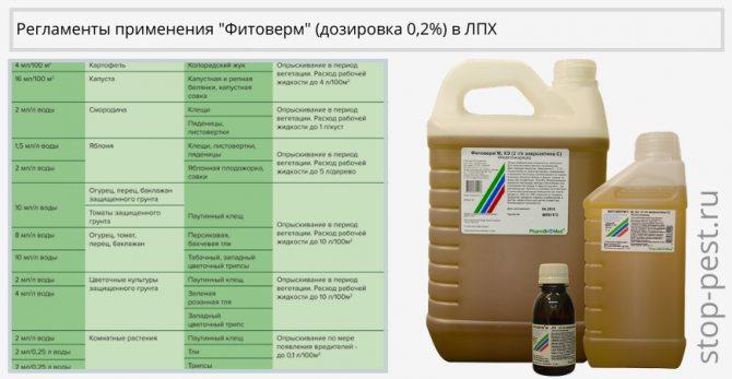 Защита тепличных растений от болезней и вредителей на supersadovnik.ru