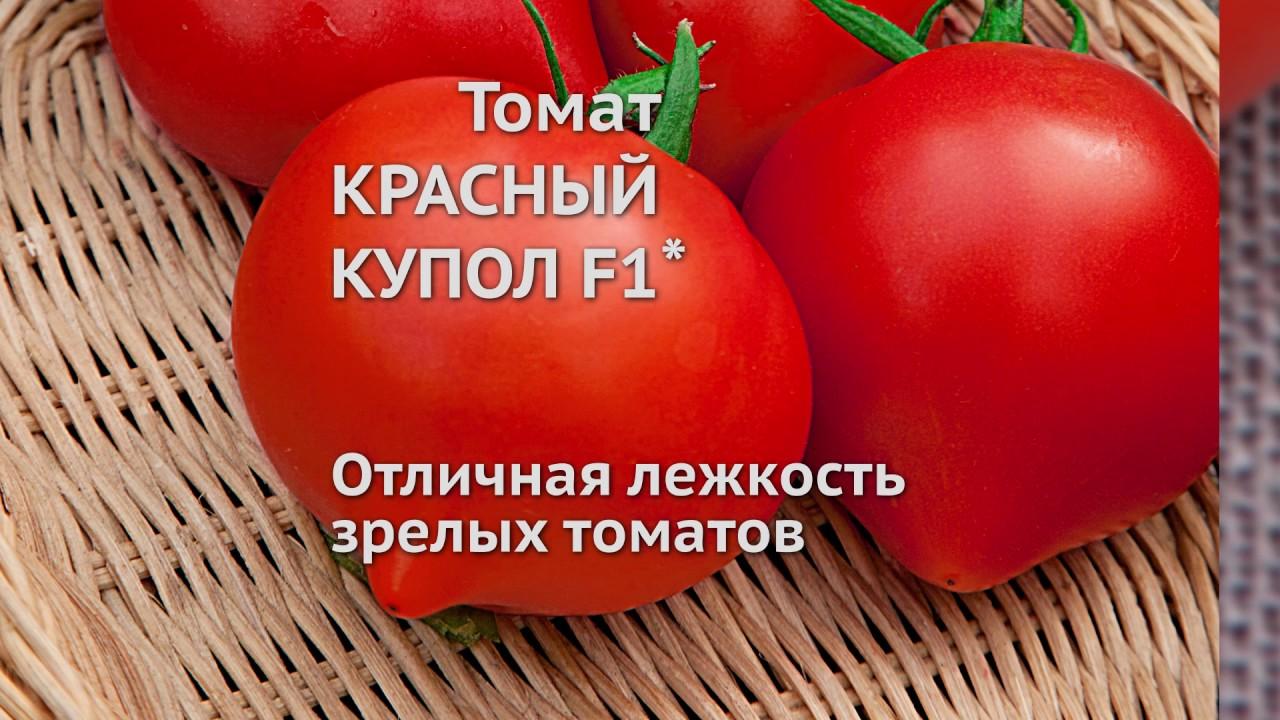 """Томат """"де барао красный"""": описание и характеристики сорта, рекомендации по выращиванию и фото русский фермер"""