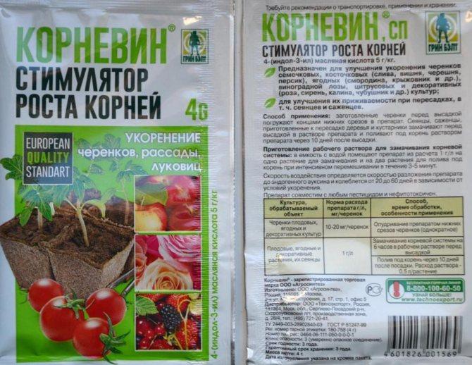 Стимуляторы роста для рассады перца: правила и достоинства применения препаратов корневин, эпин экстра и янтарная кислота русский фермер