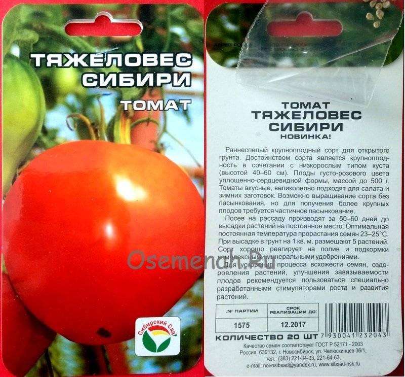 Томат атаман: характеристика и описание сорта, фото и отзывы об урожайности тех кто сажал помидоры