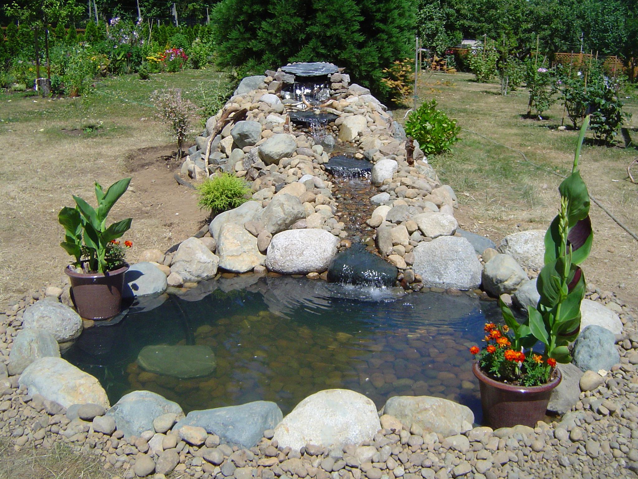 Пруд на даче: фото и пошаговая инструкция, установки водоема своими руками