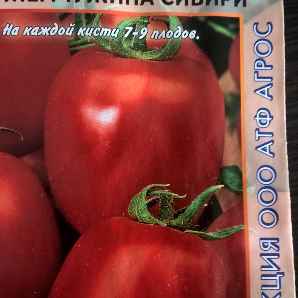 Описание томата солоха и характеристика сорта