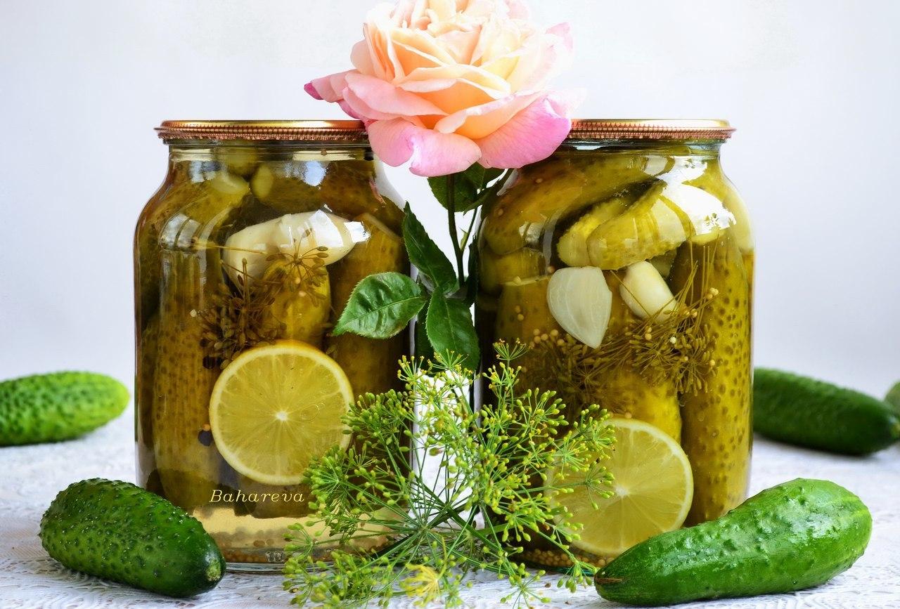 Огурцы с луком на зиму: самые вкусные рецепты салатов с варкой и без варки. бонус: очень простой рецепт салата из огурцов с луком и растительным маслом