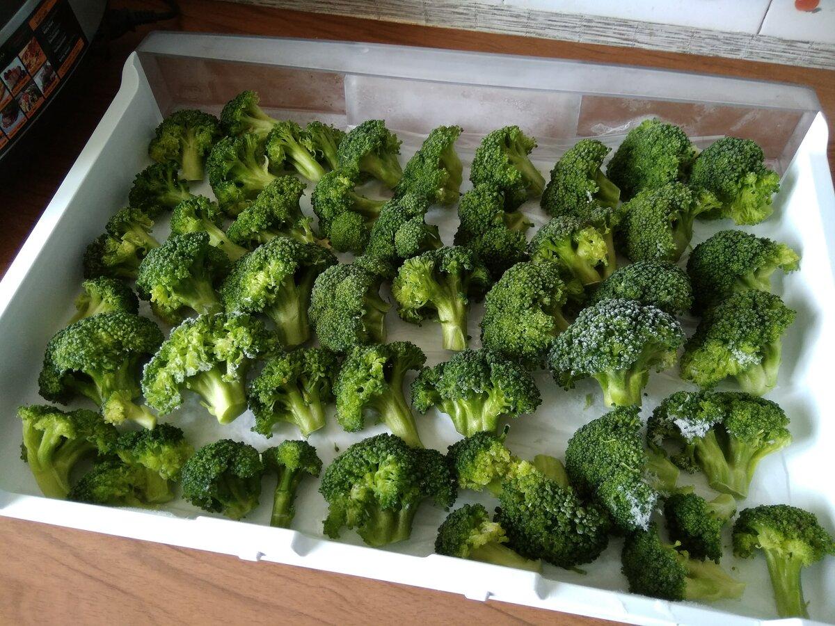 Консервирование брокколи на зиму рецепты. консервирование брокколи на зиму: лучшие рецепты