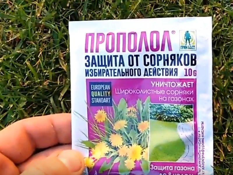 Способы борьбы с сорняками: обзор лучших гербицидов, механическое воздействие, мульчирование, народные методы, плюсы и минусы перечисленного