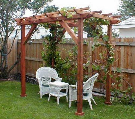 Правила возведения арки для винограда