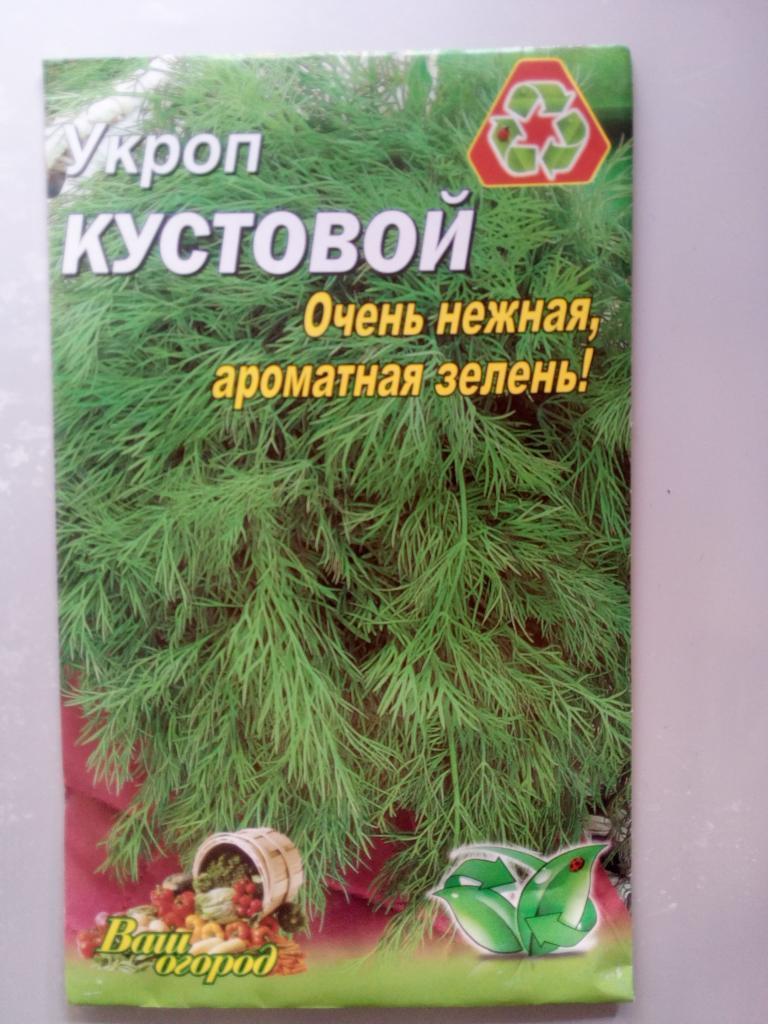 Укроп — сорта, условия для посадки, правила выращивания. | cельхозпортал