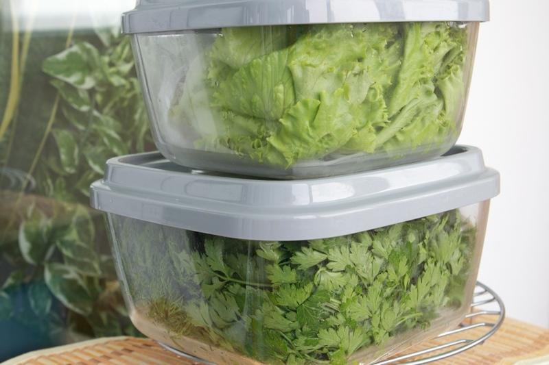 Правила хранения зелени в холодильнике