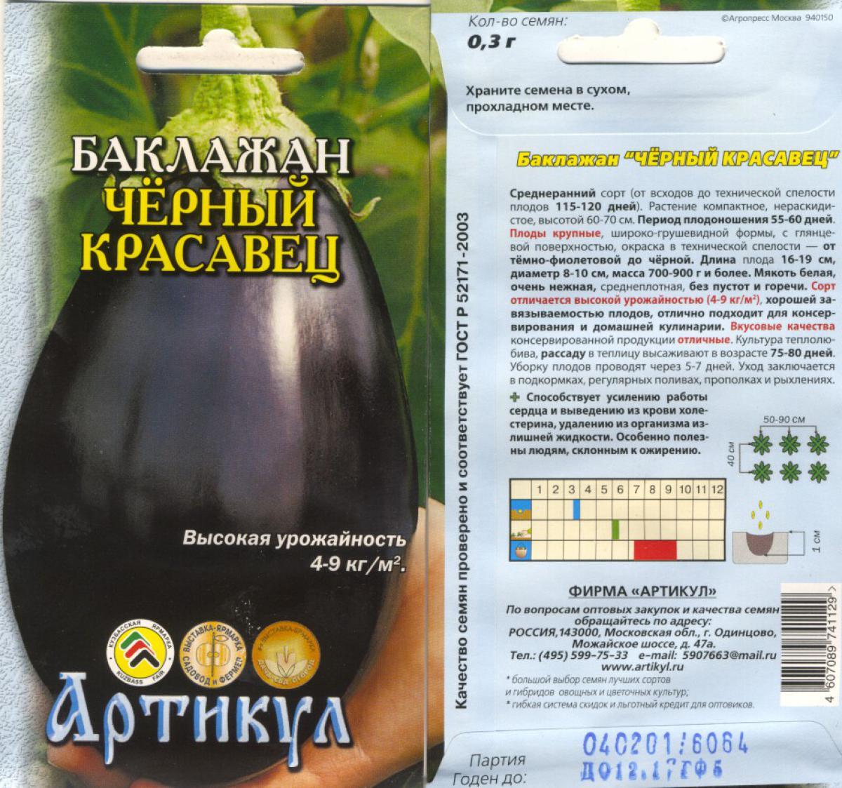 Сорт баклажанов черный красавец - описание и характеристика, фото