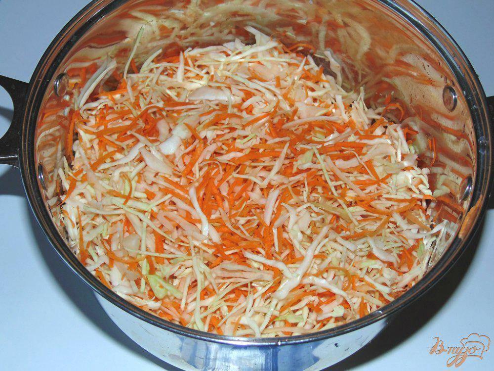Квашеная капуста: 13 лучших рецептов и как правильно сделать в домашних условиях