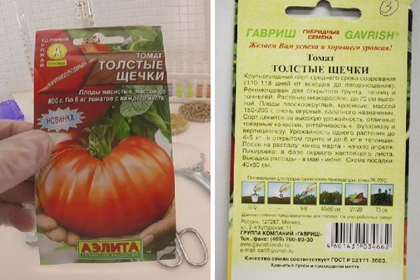 Томат толстый боцман: характеристика и описание гибридного сорта с фото