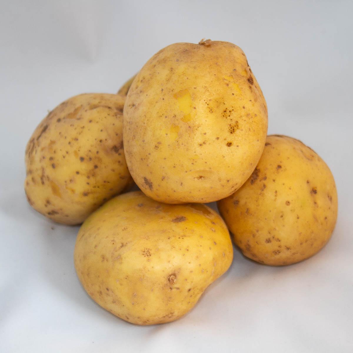 """Картофель """"джелли"""": описание сорта, фото, отзывы"""