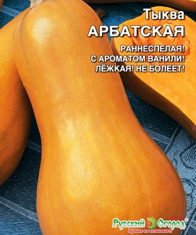 Мускатная тыква: советы по выращиванию