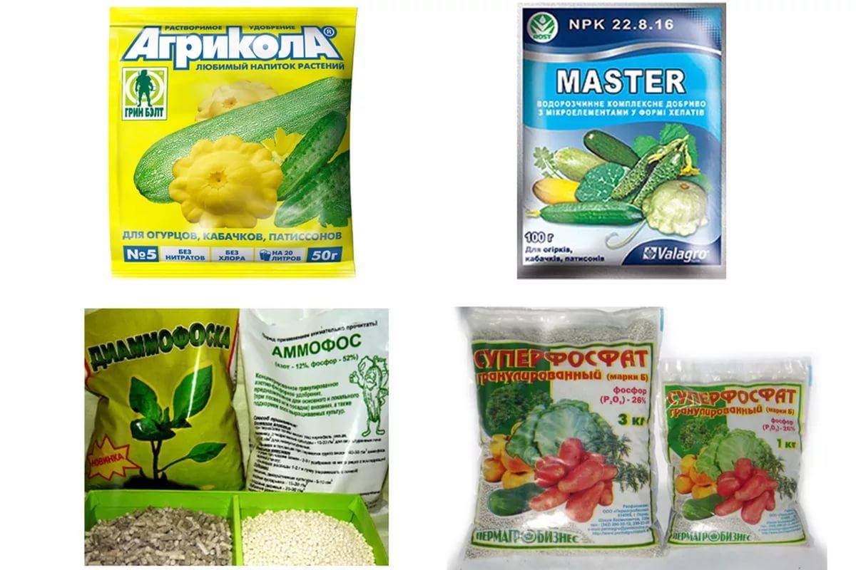 Азотные удобрения для огурцов в теплице и открытом грунте: как правильно произвести подкормку азотом и подкормить