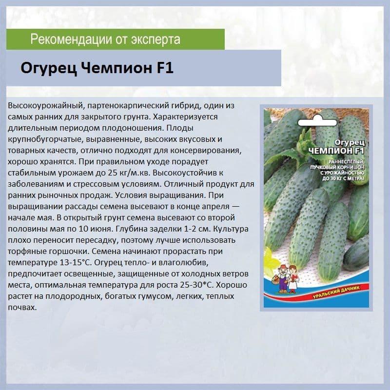 Огурец эстафета f1 описание и характеристика сорта, отзывы и фото