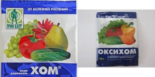 Оксихом: инструкция по применению, отзывы, когда обрабатывать растения от грибка