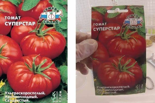 Лучшие сорта и гибриды томатов: фото, описание и характеристика  помидоров для огорода и комнаты