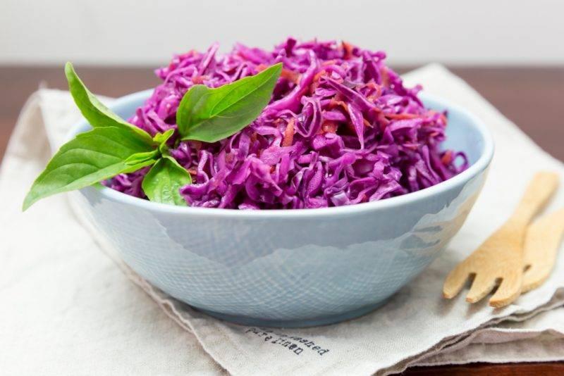 Тушеная краснокочанная капуста: можно ли и как надо выполнять рецепты приготовления овоща по-немецки, на сковороде, с яблоками, фасолью, мясом и другими продуктами? русский фермер
